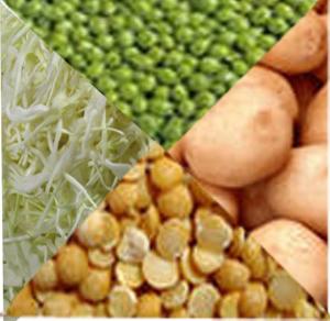 продукты способствующие похудению. овощной гарнир