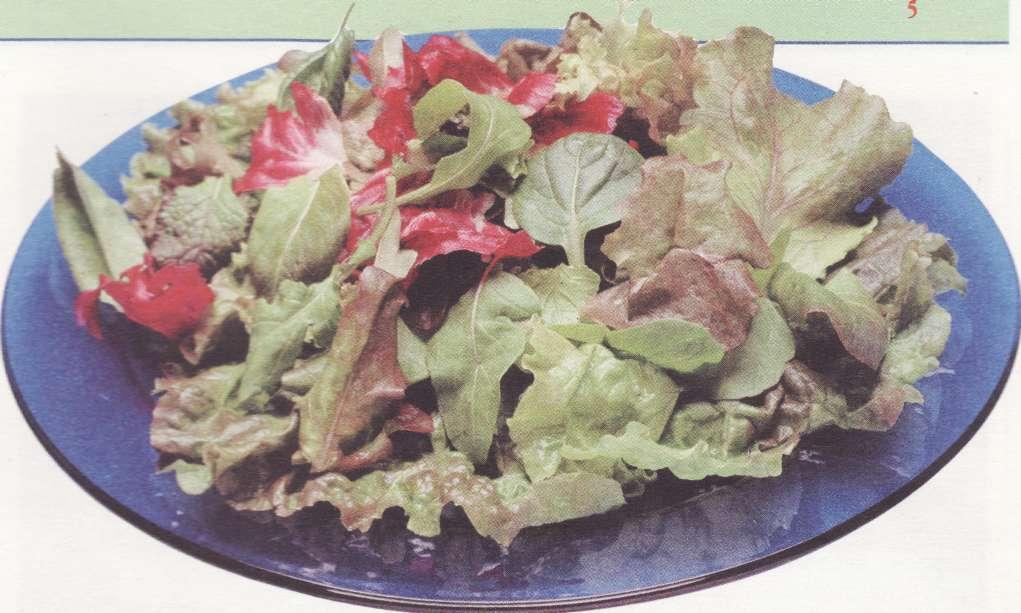 рецепты салатов для двоих
